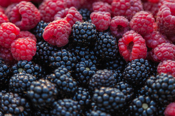 Background Image - Fresh Blackberries and Raspberries
