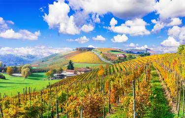 Wall Murals Vineyard Beautiful autumn landscape with vineyards in Tuscany. Famos wine region of Italy