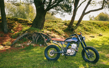 Beautiful vintage custom motorcycle parked in the field