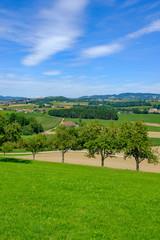view to valley aisttal near pregarten, mühlviertel, upper austria