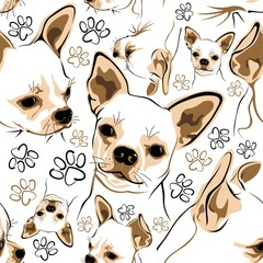 Seamless pattern with Chihuahua and dog accessories