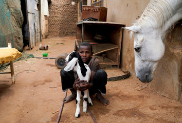 The Wider Image: Khartoum's Equestrian Club struggles amid Sudan upheaval