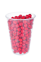 Ripe rowan berries in disposable cup isolated on white background