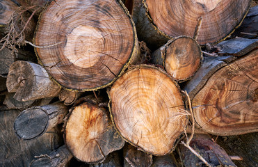Background of cutted logs. Firewood stack natural background