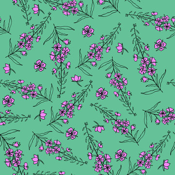 Seamless vector pattern Willow herb, Chamerion angustifolium, fireweed, rosebay hand drawn color sketch botanical illustration, graphic flowers texture background for wallpaper, textile, packaging tea
