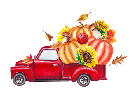 Red harvest truck with pumpkins, sunflowers, fallen autumn leaves. Thanksgiving hand drawn watercolor illustration