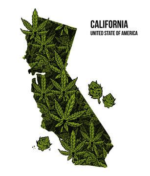 California USA cannabis print design