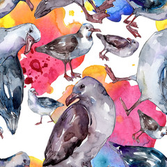 Sky bird seagull in a wildlife isolated. Watercolor background illustration set. Seamless background pattern.