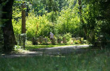Friedhof - Witwe pflegt ein Grab