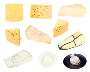 collection of various cheeses isolated