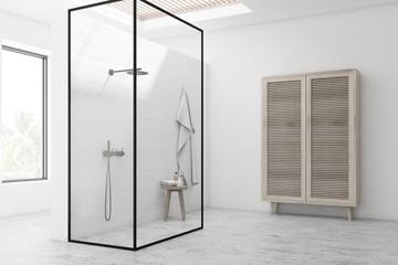 White bathroom corner with shower stall