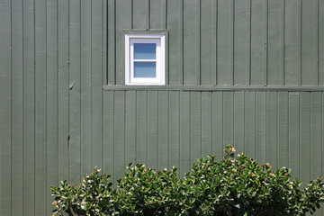 View of a small white window in a large section of a dark green wood paneled building wall with a bush in the foreground