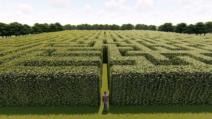 Man walking into big labyrinth 3D rendering