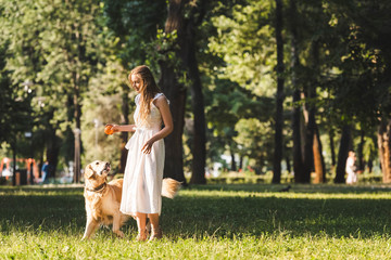 Wall Mural - full length view of beautiful young girl in white dress standing on meadow near golden retriever