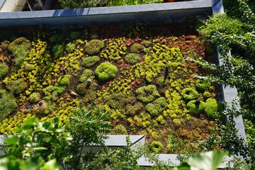Flachdachbegrünung, Klimaschutz, CO2