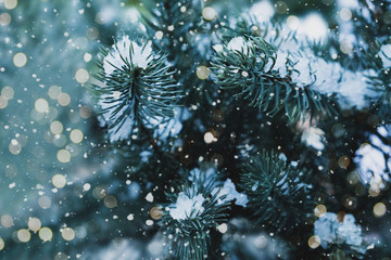 Closeup of Christmas tree with light, snow flake. Christmas and New Year holiday background....