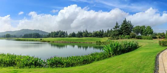 Photo sur Aluminium Rivière de la forêt Green grass and woods with lake under blue sky