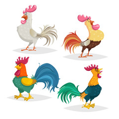 Cute cartoon roosters different breeds set. Comic style cocks with shadows. Farm animals in flat with simple gradients. Vector illustrations.