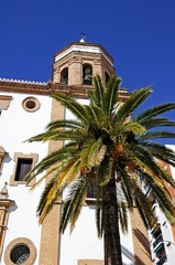 View of Merced Church with a palm tree in the foreground, Ronda, Andalusia, Spain.