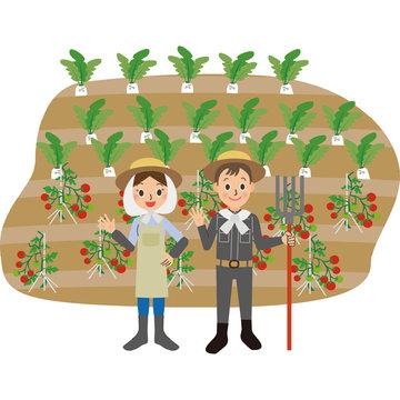 農家 夫婦 仕事 畑