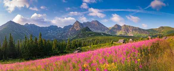mountain landscape, Tatra mountains panorama, Poland colorful flowers and cottages in Gasienicowa valley (Hala Gasienicowa), summer Wall mural