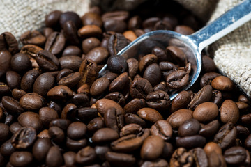 bag with coffee beans, concept photos