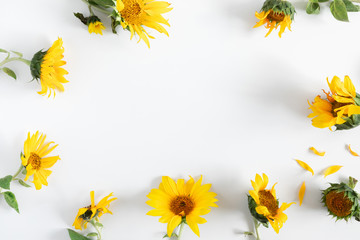 Flowers composition. Frame made of sunflower flowers on white background. Flat lay, top view, copy space Fototapete