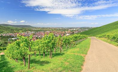 Weinberge um Weinstadt-Beutelsbach im Remstal