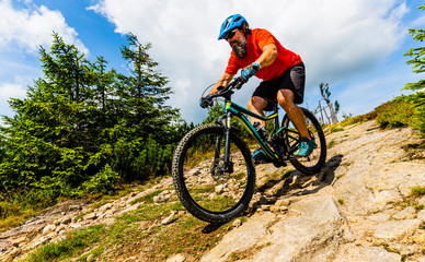 Wall Mural - Mountain biker riding on bike in summer mountains forest landscape. Man cycling MTB flow trail track. Outdoor sport activity.