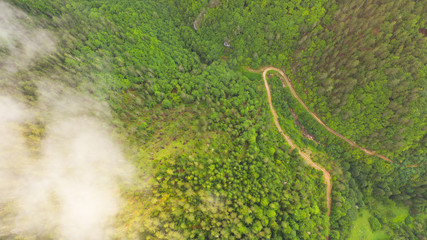 Aerial view of tropical rainforest covered by cloud and fog.