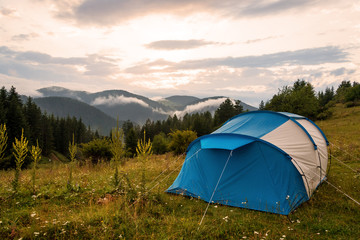 Tent in forest meadow.