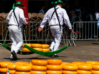 Dutch Cheese Markets at the markets square of the Old Cities of Alkmaar and Gouda
