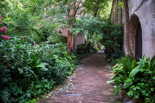 Scenic view of rustic brick Philadelphia Alley lined with subtropical greenery in the old colonial center of Charleston, South Carolina, USA