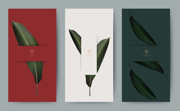 Set of banner for branding packaging leaf nature background. Design for logo, voucher, Summer tropical, autumn and Christmas season greeting. Minimal modern style. vector illustration