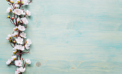 White flowers on blue wooden background