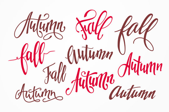 Vector set of handwritten inscriptions Autumn and Fall. Seasonal calligraphic lettering isolated on background. Hand-drawn text for design of autumnal banners and flyers.