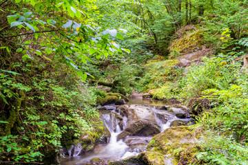 Kleiner Wasserfall in der Klamm des Ehrbaches im Hunsrück