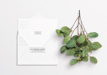 Card with Envelope and Eucalyptus Art Kit