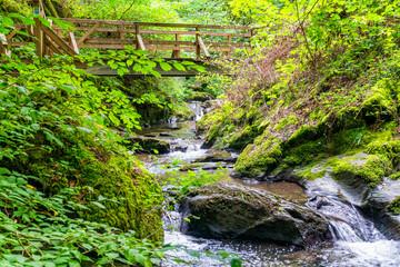 Sichere Holzbrücke über den Ehrbach im Hunsrück