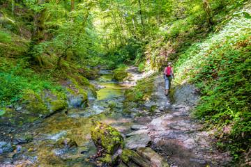 Wandern in der Ehrbachklamm im Hunsrück