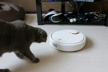 A White robot vacuum cleaner removes debris on a laminate. Smart cleaning. Cat looks at a robot vacuum cleaner.