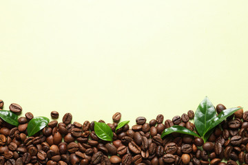 Fresh green coffee leaves and beans on light green background, flat lay. Space for text