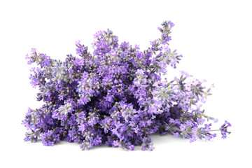In de dag Lavendel Beautiful tender lavender flowers on white background