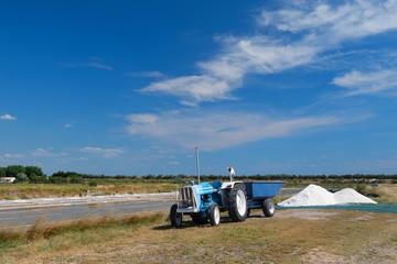 Ile de Re salt lakes