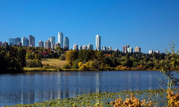 Deer Lake Park and Metrotown of Burnaby City,  forest lake covered with water lilies, the forest and the city on the horizon