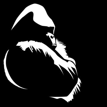 An illustration from a photo I took of a gorilla sitting with his arms crossed.