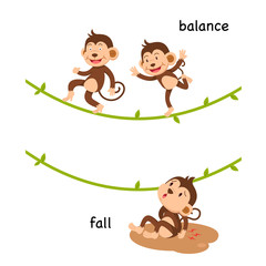Opposite fall and balance vector illustration