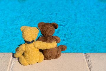 Bears at swimming pool