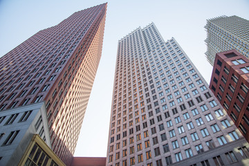 Skyscrapers in the Hague's business district