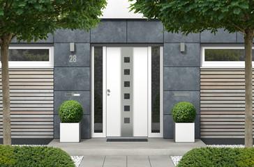 3D rendering Haus mit moderner Haustür mit Seitenteilen, Fenstern und Holz Fassadenelementen Wall mural